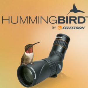 Cannocchiale Celestron Hummingbird
